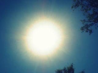 scorching sunlight
