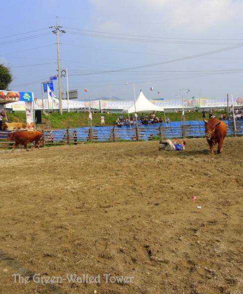bullfighting 10