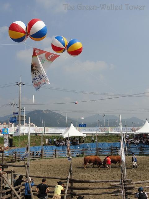 bullfighting 7