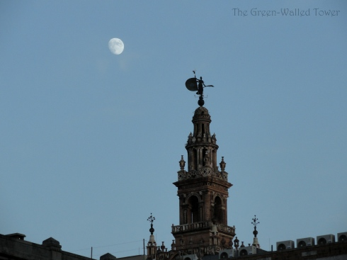taken in Sevilla, Spain