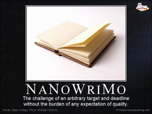 I get the feeling this guy doesn't like Nanowrimo
